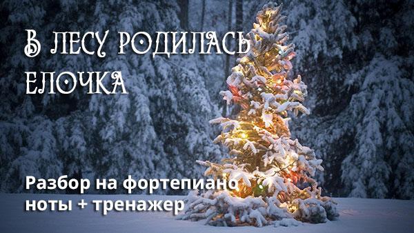 v-lesu-rodilas-elochka-easy